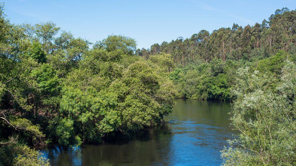arturo alvarez rio Ulla